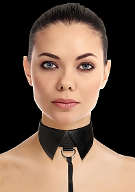 Classic Collar with Leash - Black