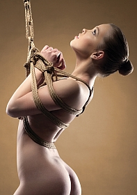 Shibari Rope - 5m - Brown